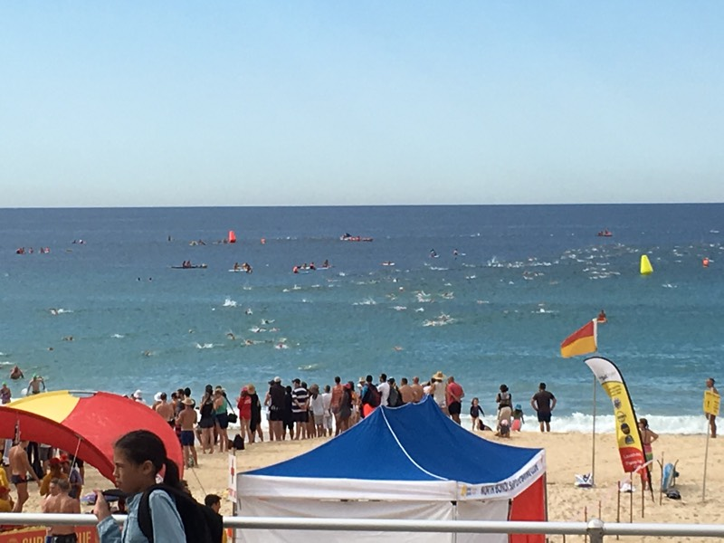 OCEANSWIM RACE RECAP – North Bondi Classic Ocean Swim